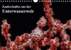 Zauberhaftes aus der Unterwasserwelt (Wandkalender 2019 DIN A4 quer) von Smith,  Sidney