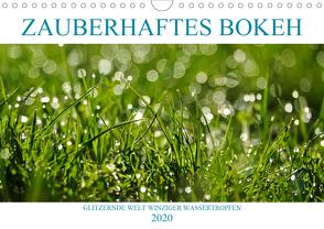Zauberhaftes Bokeh – Glitzernde Welt winziger Wassertropfen (Wandkalender 2020 DIN A4 quer) von Jäger,  Anette/Thomas