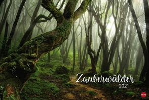 Zauberwälder Edition Kalender 2021 von Heye