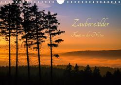 Zauberwälder – Flüstern der Natur (Wandkalender 2021 DIN A4 quer) von Pi,  Dora