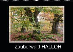 Zauberwald HALLOH (Wandkalender 2019 DIN A2 quer) von Maurer,  Marion