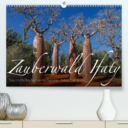 Zauberwald Ifaty · Traumhafte Baobabs in Madagaskar (Premium, hochwertiger DIN A2 Wandkalender 2020, Kunstdruck in Hochglanz) von Bruhn,  Olaf