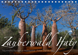 Zauberwald Ifaty · Traumhafte Baobabs in Madagaskar (Tischkalender 2019 DIN A5 quer) von Bruhn,  Olaf