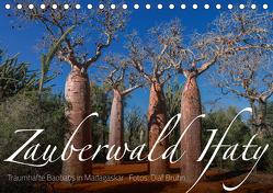 Zauberwald Ifaty · Traumhafte Baobabs in Madagaskar (Tischkalender 2020 DIN A5 quer) von Bruhn,  Olaf