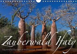 Zauberwald Ifaty · Traumhafte Baobabs in Madagaskar (Wandkalender 2019 DIN A4 quer) von Bruhn,  Olaf