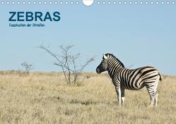 Zebras – Faszination der Streifen (Wandkalender 2020 DIN A4 quer) von Krebs,  Thomas