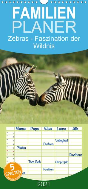 Zebras – Faszination der Wildnis – Familienplaner hoch (Wandkalender 2021 , 21 cm x 45 cm, hoch) von Haase,  Nadine