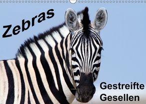 Zebras – Gestreifte Gesellen (Wandkalender 2018 DIN A3 quer) von Stern,  Angelika
