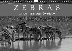 Zebras – Mehr als nur Streifen (Wandkalender 2019 DIN A4 quer) von Pavlowsky Photography,  Markus