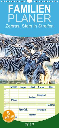 Zebras, Stars in Streifen – Familienplaner hoch (Wandkalender 2019 , 21 cm x 45 cm, hoch) von Styppa,  Robert
