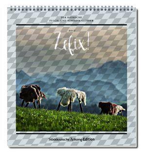 Zefix! Wandkalender 2017 von Bolle,  Martin, Keller,  Markus C, Mothwurf,  Ono