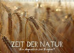 Zeit der Natur – Ein Augenblick zur Ewigkeit (Wandkalender 2019 DIN A3 quer) von Photon (Veronika Verenin),  Vronja