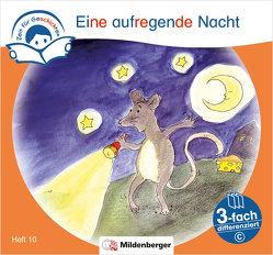 Zeit für Geschichten – 3-fach differenziert, Heft 10: Eine aufregende Nacht – C von Erdmann,  Bettina, Gaida,  Katrin