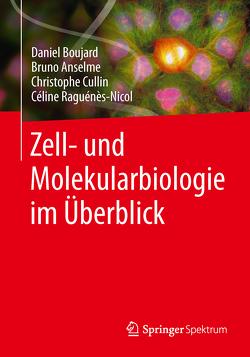 Zell- und Molekularbiologie im Überblick von Anselme,  Bruno, Boujard,  Daniel, Cullin,  Christophe, Lechowski,  Sandra, Raguénès-Nicol,  Céline
