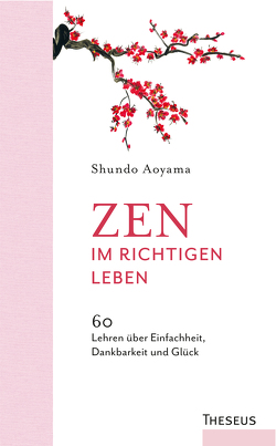 Zen im richtigen Leben von Aoyama,  Shundo