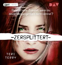 Zersplittert – Teil 2 von Hertle,  Marion, Karun,  Vanida, Knese,  Petra, Terry,  Teri