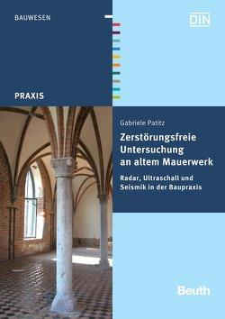 Zerstörungsfreie Untersuchung an altem Mauerwerk – Buch mit E-Book von Patitz,  Gabriele