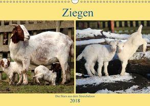 Ziegen – Die Stars aus dem Streichelzoo (Wandkalender 2018 DIN A3 quer) von Klatt,  Arno
