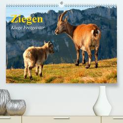 Ziegen. Kluge Freigeister (Premium, hochwertiger DIN A2 Wandkalender 2021, Kunstdruck in Hochglanz) von Stanzer,  Elisabeth