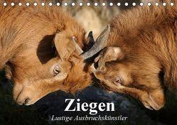 Ziegen. Lustige Ausbruchskünstler (Tischkalender 2019 DIN A5 quer) von Stanzer,  Elisabeth