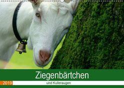 Ziegenbärtchen und Kulleraugen (Wandkalender 2019 DIN A2 quer) von Müller Fotografie,  Bea