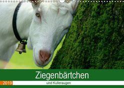 Ziegenbärtchen und Kulleraugen (Wandkalender 2019 DIN A3 quer) von Müller Fotografie,  Bea