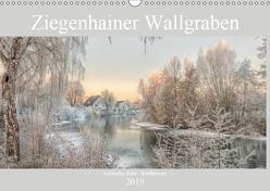 Ziegenhainer Wallgraben (Wandkalender 2019 DIN A3 quer) von Lidiya