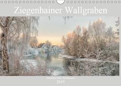 Ziegenhainer Wallgraben (Wandkalender 2019 DIN A4 quer) von Lidiya