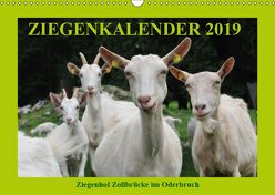 Ziegenkalender 2019 (Wandkalender 2019 DIN A3 quer) von und Dietmar Püpke,  Antje