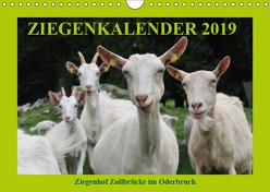 Ziegenkalender 2019 (Wandkalender 2019 DIN A4 quer) von und Dietmar Püpke,  Antje