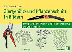 Ziergehölz- und Pflanzenschnitt in Bildern von Möller,  Hans H