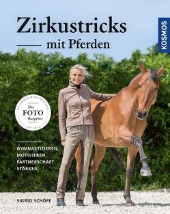 Zirkustricks mit Pferden von Schöpe,  Sigrid