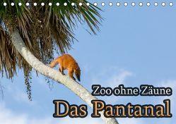 Zoo ohne Zäune – Das Pantanal (Tischkalender 2019 DIN A5 quer) von Sobottka,  Joerg
