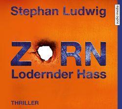 Zorn 7 – Lodernder Hass von Ludwig,  Stephan, Nathan,  David