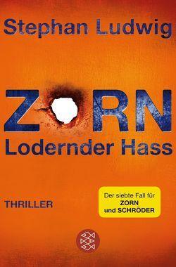 Zorn 7 – Lodernder Hass von Ludwig,  Stephan