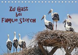 Zu Gast bei Familie Storch (Tischkalender 2021 DIN A5 quer) von GUGIGEI