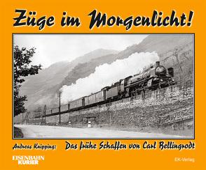 Züge im Morgenlicht von Knipping,  Andreas