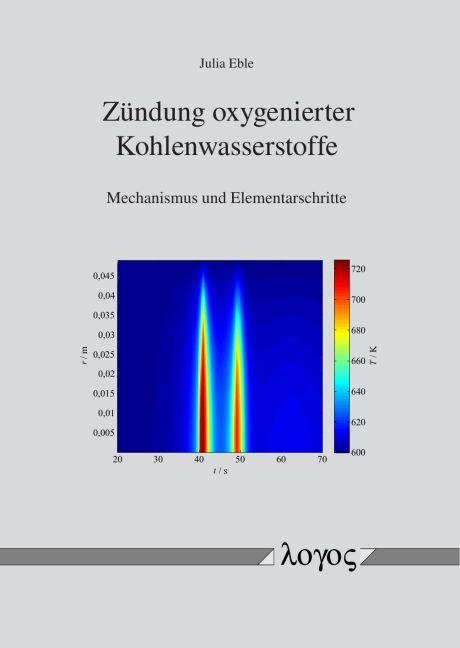 Zündung oxygenierter Kohlenwasserstoffe von Eble, Julia: Mechanismus