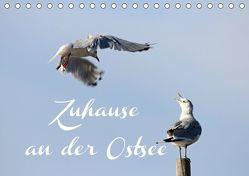 Zuhause an der Ostsee (Tischkalender 2019 DIN A5 quer) von Hultsch,  Heike