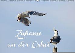 Zuhause an der Ostsee (Wandkalender 2018 DIN A2 quer) von Hultsch,  Heike