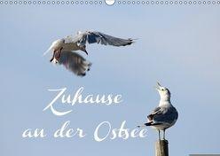 Zuhause an der Ostsee (Wandkalender 2018 DIN A3 quer) von Hultsch,  Heike