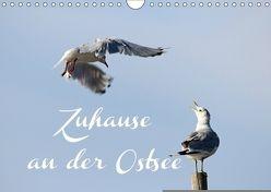 Zuhause an der Ostsee (Wandkalender 2018 DIN A4 quer) von Hultsch,  Heike