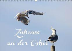 Zuhause an der Ostsee (Wandkalender 2019 DIN A3 quer) von Hultsch,  Heike