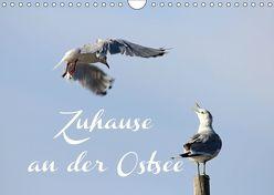Zuhause an der Ostsee (Wandkalender 2019 DIN A4 quer) von Hultsch,  Heike