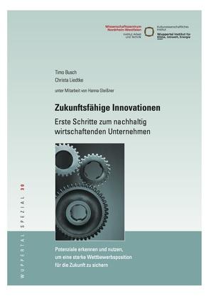 Zukunftsfähige Innovationen von Busch,  Timo, Liedtke,  Christa