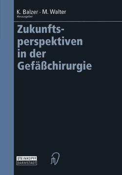 Zukunftsperspektiven in der Gefäßchirurgie von Balzer,  Klaus, Walter,  Michael