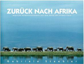 Zurück nach Afrika von Staebler,  Gabriela