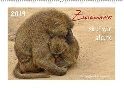Zusammen sind wir stark – Geborgenheit im Tierreich (Wandkalender 2019 DIN A2 quer) von Düll,  Sigrun