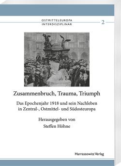 Zusammenbruch, Trauma, Triumph von Höhne,  Steffen