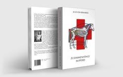 Zusammenhänge im Pferd von von Bismarck,  Julie